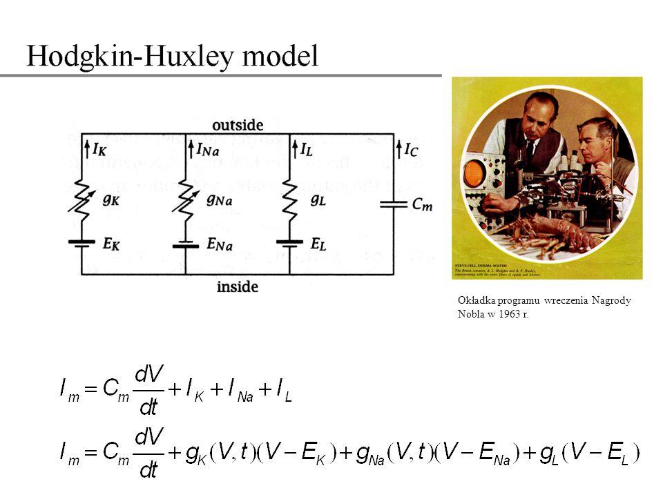 Pomiary voltage clamp dla różnych wartości V pozwoliły HH postawić hipotezę, że kanał Na posiada bramkę aktywacyjną i bramkę inaktywacyjną.