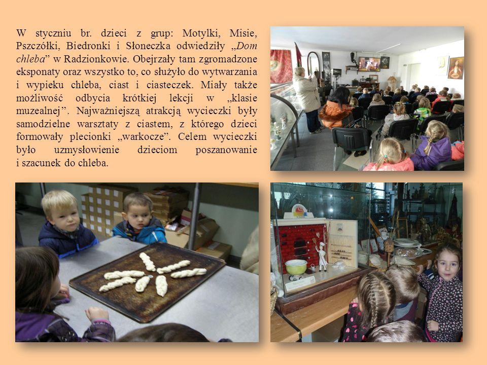 W styczniu br. dzieci z grup: Motylki, Misie, Pszczółki, Biedronki i Słoneczka odwiedziły Dom chleba w Radzionkowie. Obejrzały tam zgromadzone ekspona