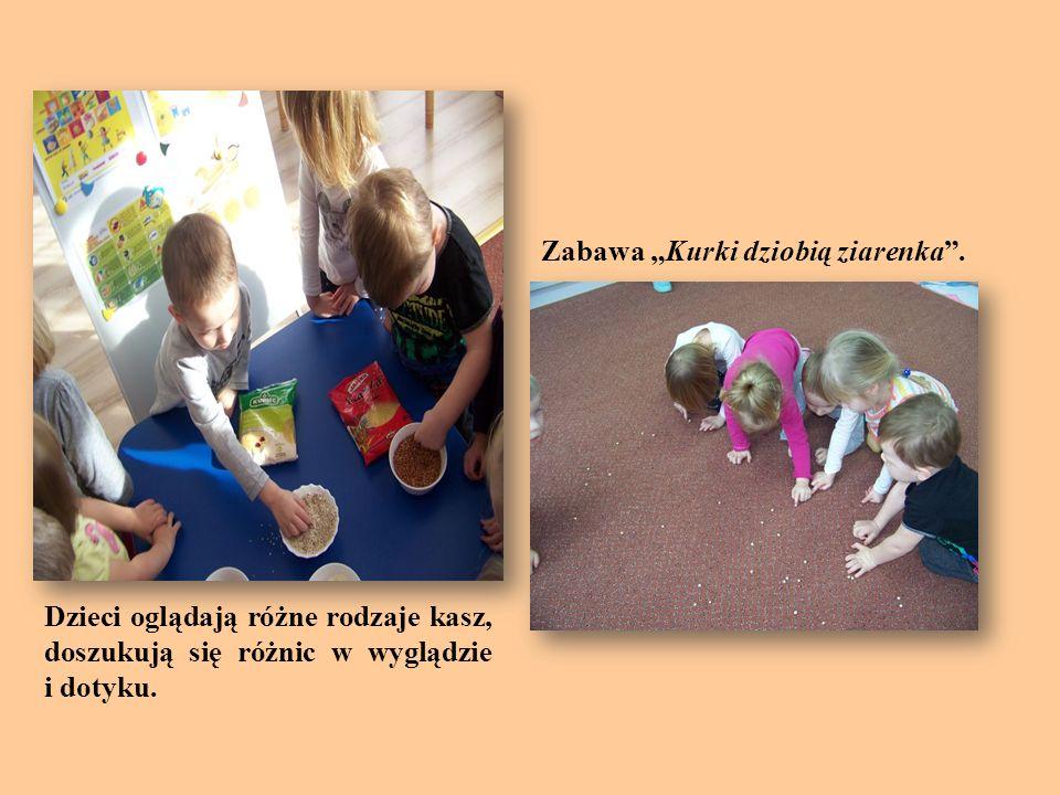 Dzieci oglądają różne rodzaje kasz, doszukują się różnic w wyglądzie i dotyku. Zabawa Kurki dziobią ziarenka.