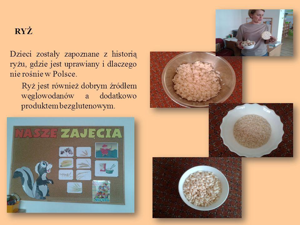 RYŻ Dzieci zostały zapoznane z historią ryżu, gdzie jest uprawiany i dlaczego nie rośnie w Polsce. Ryż jest również dobrym źródłem węglowodanów a doda