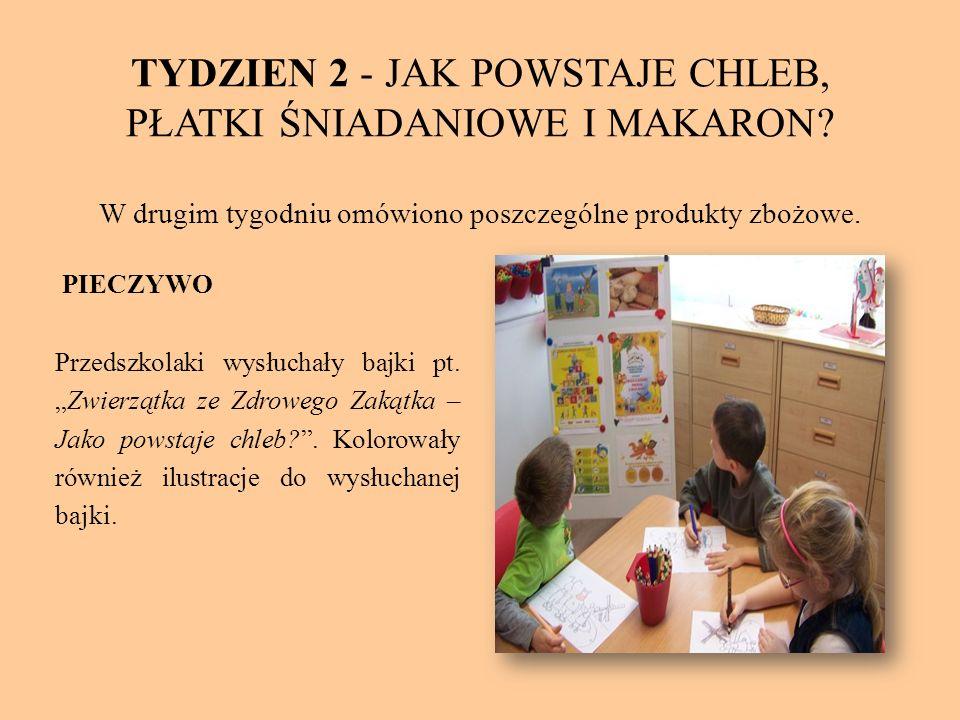 RYŻ Dzieci zostały zapoznane z historią ryżu, gdzie jest uprawiany i dlaczego nie rośnie w Polsce.