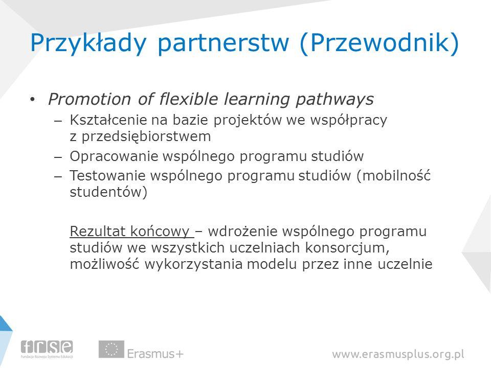 Przykłady partnerstw (Przewodnik) Promotion of flexible learning pathways – Kształcenie na bazie projektów we współpracy z przedsiębiorstwem – Opracow