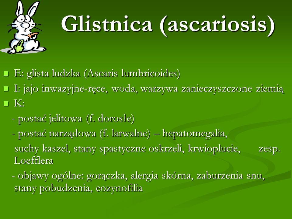 Glistnica (ascariosis) E: glista ludzka (Ascaris lumbricoides) E: glista ludzka (Ascaris lumbricoides) I: jajo inwazyjne-ręce, woda, warzywa zanieczys