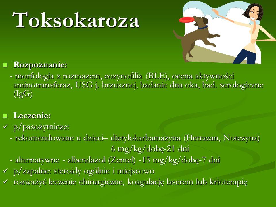 Toksokaroza Rozpoznanie: Rozpoznanie: - morfologia z rozmazem, eozynofilia (BLE), ocena aktywności aminotransferaz, USG j. brzusznej, badanie dna oka,