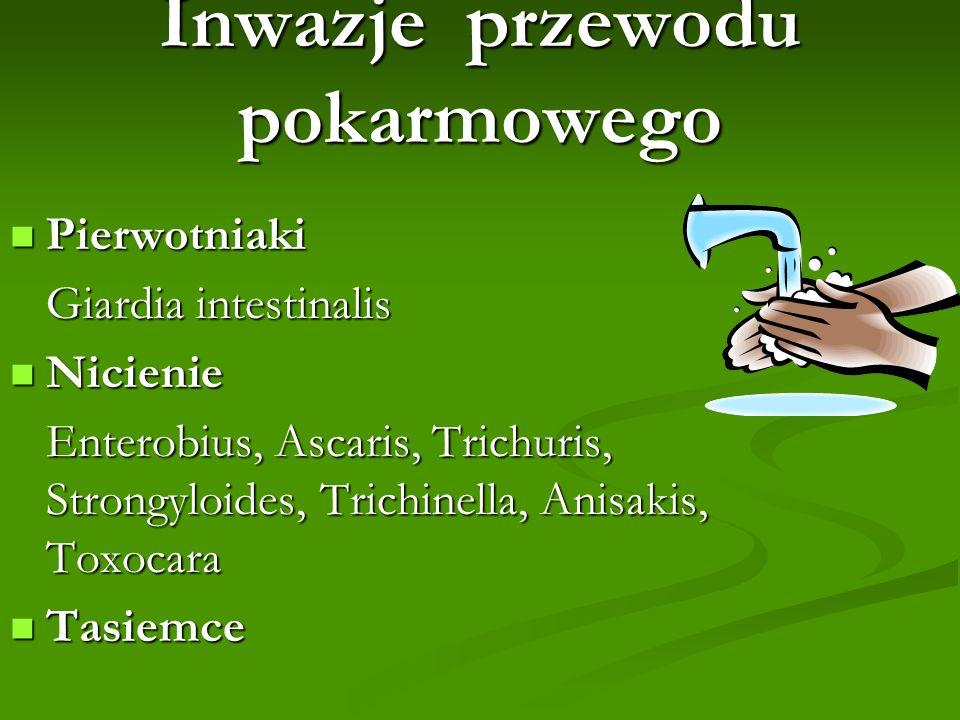 Inwazje przewodu pokarmowego Pierwotniaki Pierwotniaki Giardia intestinalis Giardia intestinalis Nicienie Nicienie Enterobius, Ascaris, Trichuris, Str