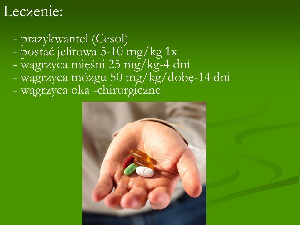 Leczenie: - prazykwantel (Cesol) - postać jelitowa 5-10 mg/kg 1x - wągrzyca mięśni 25 mg/kg-4 dni - wągrzyca mózgu 50 mg/kg/dobę-14 dni - wągrzyca oka