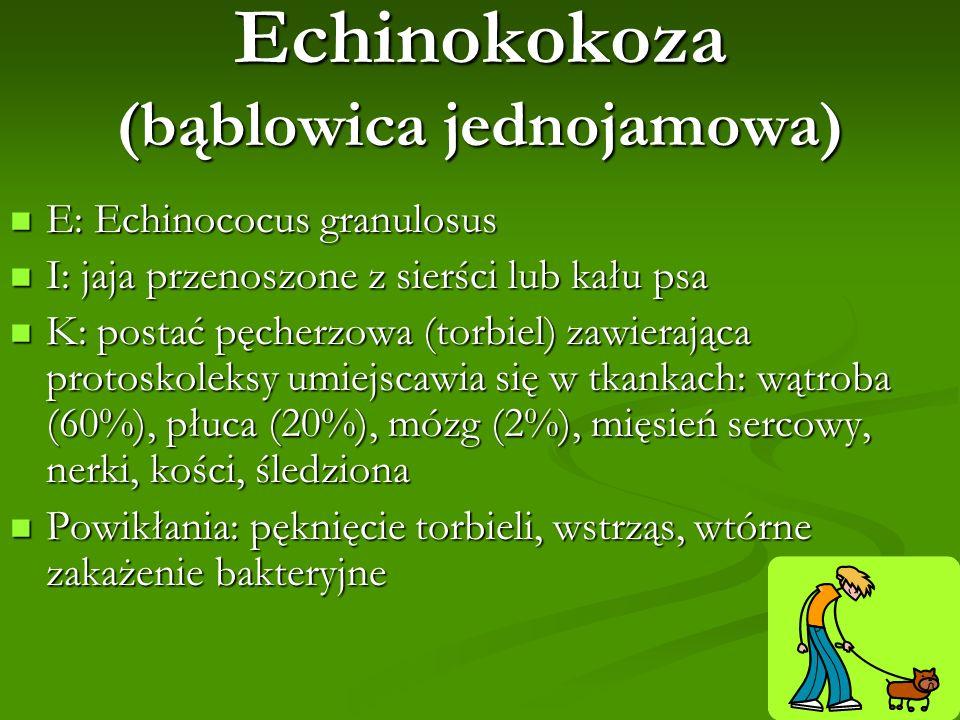 Echinokokoza (bąblowica jednojamowa) E: Echinococus granulosus E: Echinococus granulosus I: jaja przenoszone z sierści lub kału psa I: jaja przenoszon