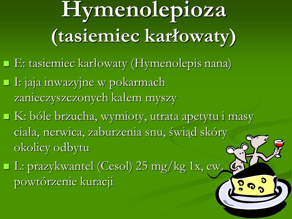 Hymenolepioza (tasiemiec karłowaty) E: tasiemiec karłowaty (Hymenolepis nana) E: tasiemiec karłowaty (Hymenolepis nana) I: jaja inwazyjne w pokarmach