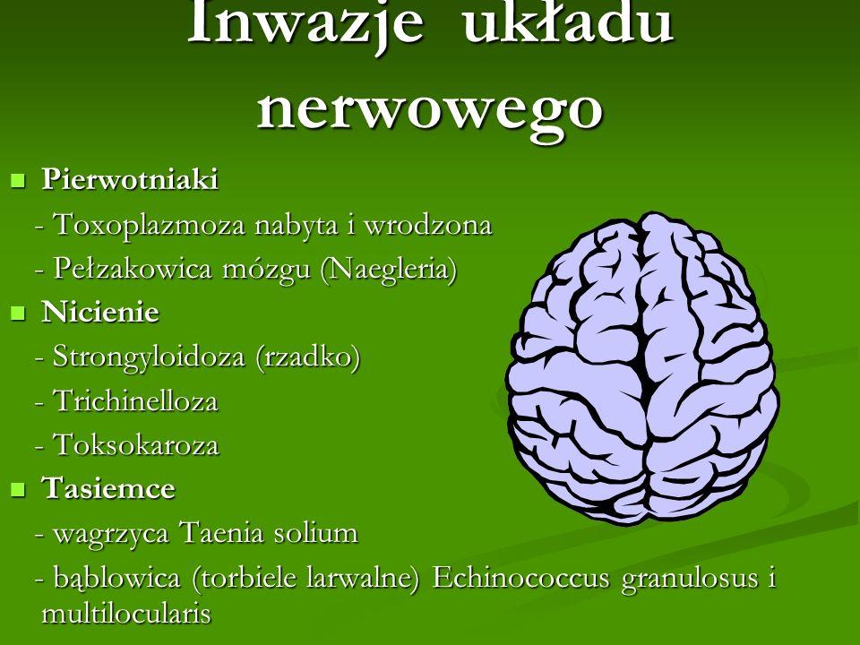 Inwazje układu nerwowego Pierwotniaki Pierwotniaki - Toxoplazmoza nabyta i wrodzona - Toxoplazmoza nabyta i wrodzona - Pełzakowica mózgu (Naegleria) -