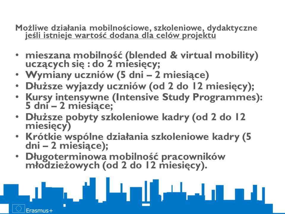 Możliwe działania mobilnościowe, szkoleniowe, dydaktyczne jeśli istnieje wartość dodana dla celów projektu mieszana mobilność (blended & virtual mobil