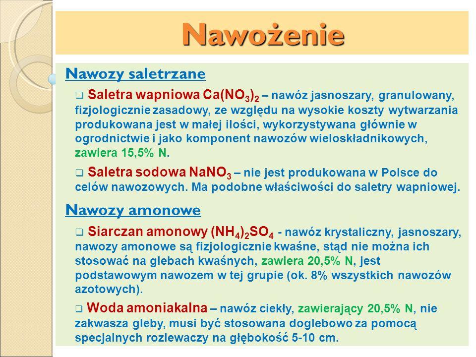 Nawożenie Nawozy saletrzane Saletra wapniowa Ca(NO 3 ) 2 – nawóz jasnoszary, granulowany, fizjologicznie zasadowy, ze względu na wysokie koszty wytwar