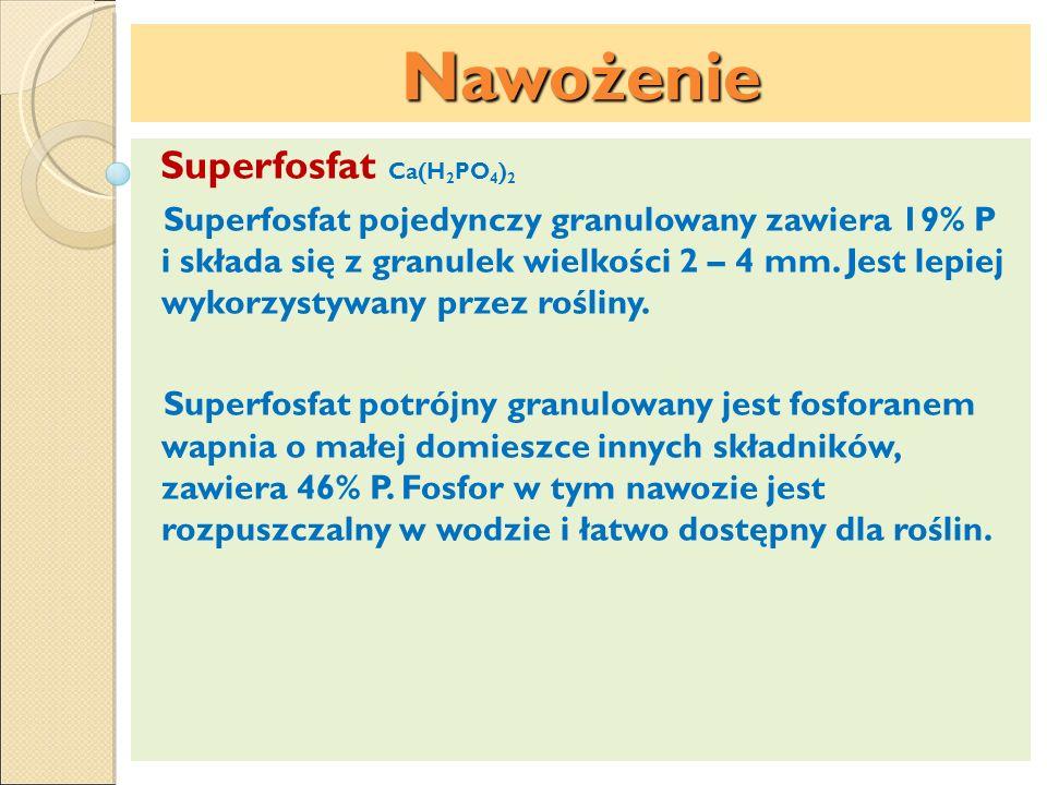 Nawożenie Superfosfat Ca(H 2 PO 4 ) 2 Superfosfat pojedynczy granulowany zawiera 19% P i składa się z granulek wielkości 2 – 4 mm. Jest lepiej wykorzy