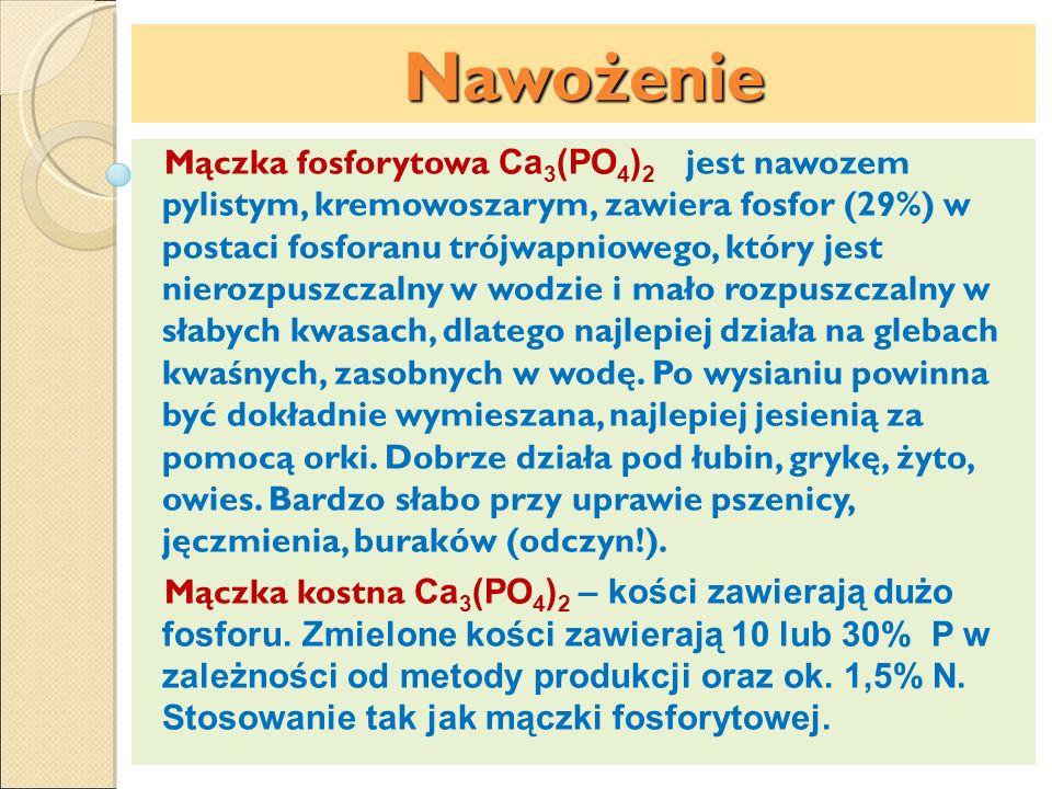 Nawożenie Mączka fosforytowa Ca 3 (PO 4 ) 2 jest nawozem pylistym, kremowoszarym, zawiera fosfor (29%) w postaci fosforanu trójwapniowego, który jest