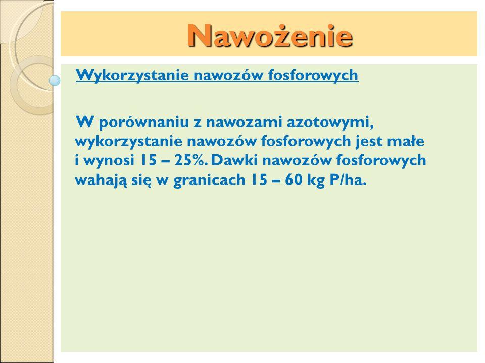 Nawożenie Wykorzystanie nawozów fosforowych W porównaniu z nawozami azotowymi, wykorzystanie nawozów fosforowych jest małe i wynosi 15 – 25%. Dawki na