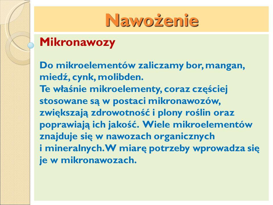 Nawożenie Mikronawozy Do mikroelementów zaliczamy bor, mangan, miedź, cynk, molibden. Te właśnie mikroelementy, coraz częściej stosowane są w postaci