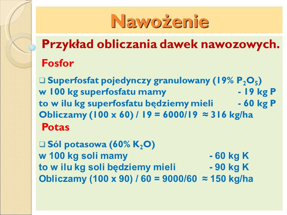 Nawożenie Przykład obliczania dawek nawozowych. Fosfor Superfosfat pojedynczy granulowany (19% P 2 O 5 ) w 100 kg superfosfatu mamy- 19 kg P to w ilu