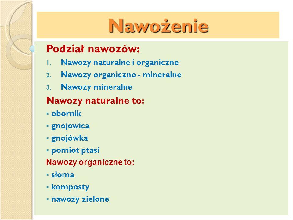 Nawożenie Podział nawozów: 1. Nawozy naturalne i organiczne 2. Nawozy organiczno - mineralne 3. Nawozy mineralne Nawozy naturalne to: obornik gnojowic