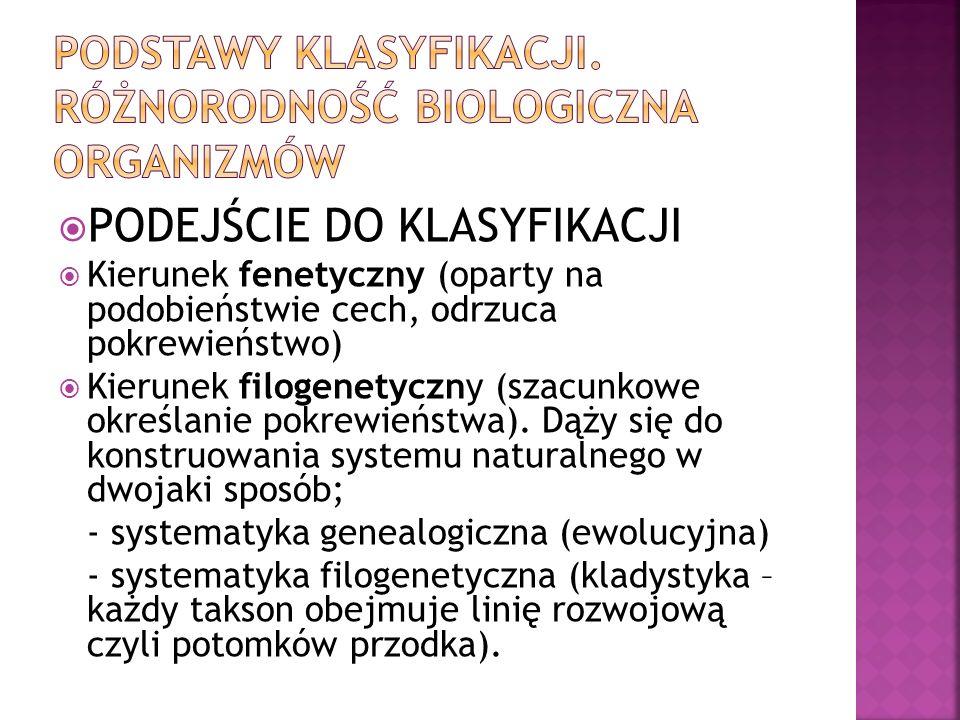 PODEJŚCIE DO KLASYFIKACJI Kierunek fenetyczny (oparty na podobieństwie cech, odrzuca pokrewieństwo) Kierunek filogenetyczny (szacunkowe określanie pok
