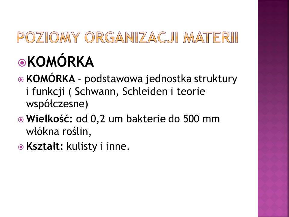 KOMÓRKA KOMÓRKA - podstawowa jednostka struktury i funkcji ( Schwann, Schleiden i teorie współczesne) Wielkość: od 0,2 um bakterie do 500 mm włókna ro