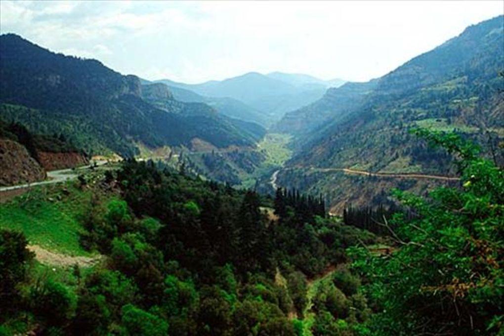 Natura 2000 Program utworzenia w krajach Unii Europejskiej wspólnego systemu obszarów objętych ochroną przyrody.