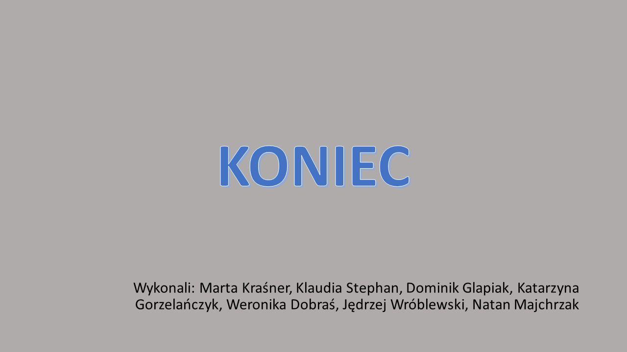 Wykonali: Marta Kraśner, Klaudia Stephan, Dominik Glapiak, Katarzyna Gorzelańczyk, Weronika Dobraś, Jędrzej Wróblewski, Natan Majchrzak