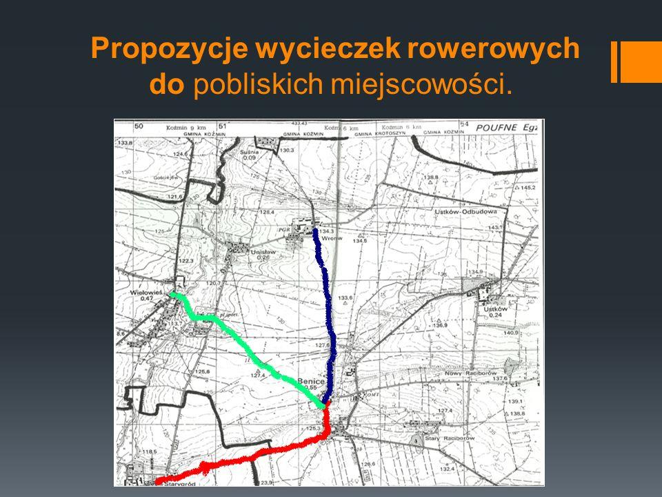 Wronów Wieś położona 2 km na płn – zach.od Benic.