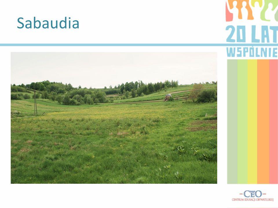 Sabaudia – wieś w Polsce położona w województwie Lubelskim, w powiecie tomaszowskim, w gminie Tomaszów Lubelski. Wieś położona w środkowej części gmin