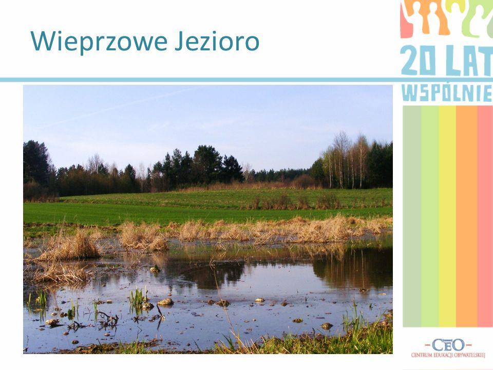 Wieprzowe Jezioro – Wieś położona w północnym skraju gminy Tomaszów Lubelski u źródeł rzeki Wieprz, w obrębie Roztocza. Pierwsza wzmianka o miejscowoś