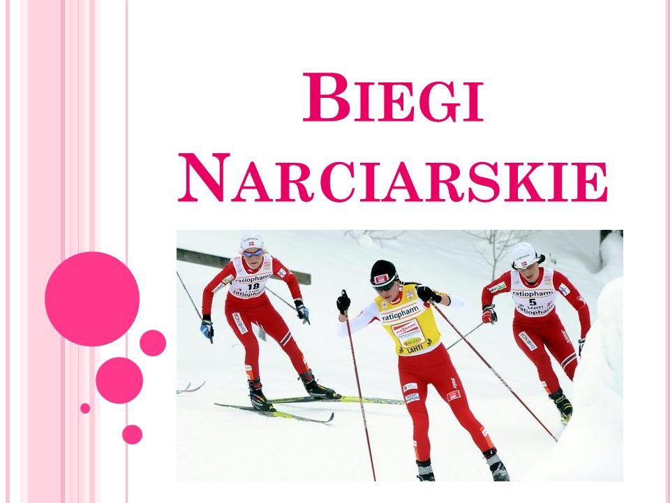 T ELEMARK Telemark jest stosowany szczególnie często w narciarstwie wolnym i skialpinizmie.