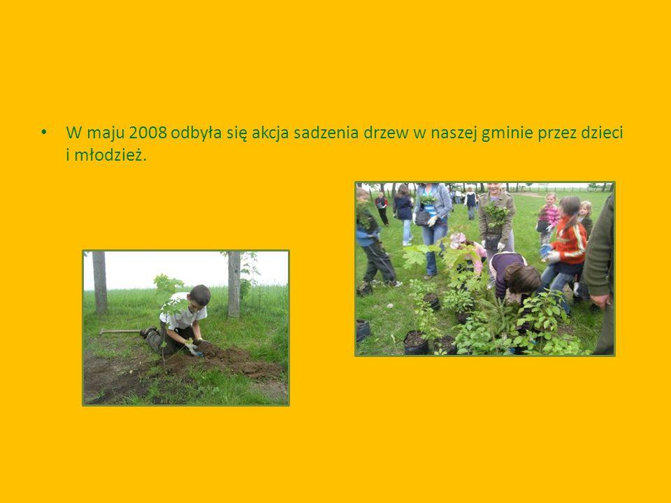 W maju 2008 odbyła się akcja sadzenia drzew w naszej gminie przez dzieci i młodzież.