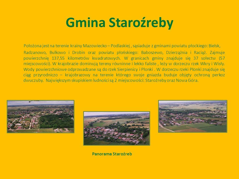 Położona jest na terenie krainy Mazowiecko – Podlaskiej, sąsiaduje z gminami powiatu płockiego: Bielsk, Radzanowo, Bulkowo i Drobin oraz powiatu płońs