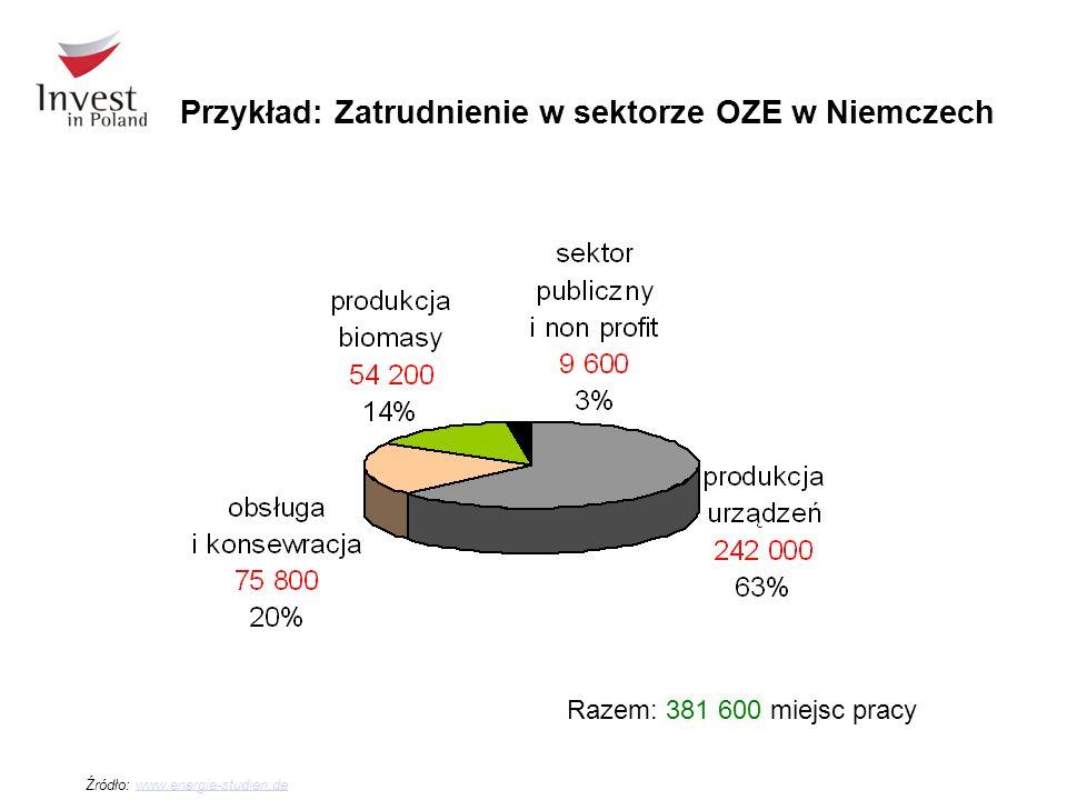 Przykład: Zatrudnienie w sektorze OZE w Niemczech Źródło: www.energie-studien.dewww.energie-studien.de Razem: 381 600 miejsc pracy