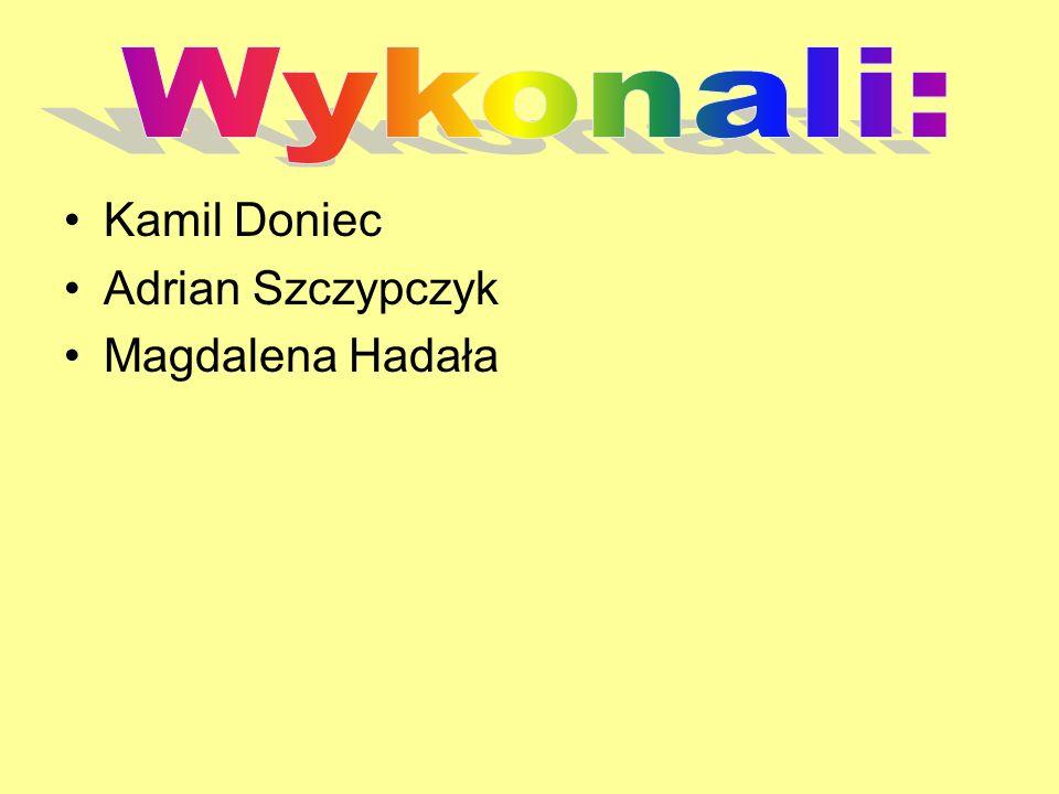 Kamil Doniec Adrian Szczypczyk Magdalena Hadała