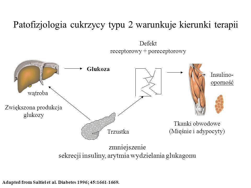 Patofizjologia cukrzycy typu 2 warunkuje kierunki terapii Adapted from Saltiel et al. Diabetes 1996; 45:1661-1669. wątroba Trzustka Tkanki obwodowe (M