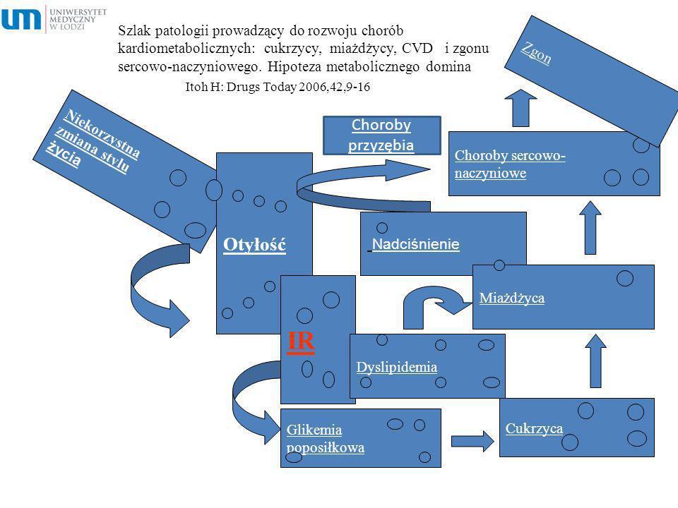 Szlak patologii prowadzący do rozwoju chorób kardiometabolicznych: cukrzycy, miażdżycy, CVD i zgonu sercowo-naczyniowego. Hipoteza metabolicznego domi
