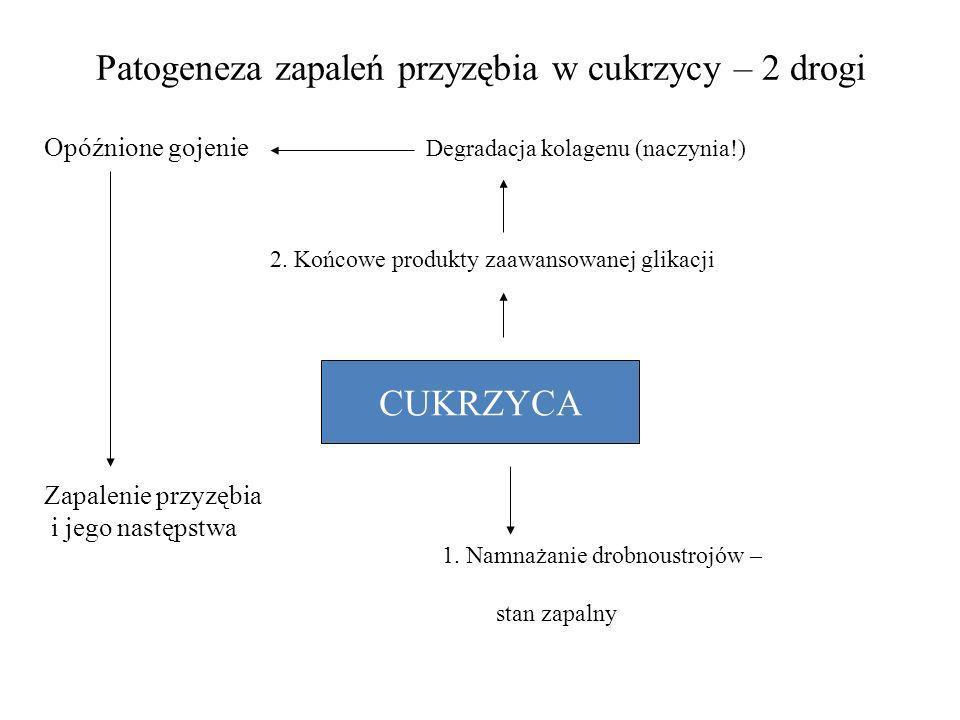 Patogeneza zapaleń przyzębia w cukrzycy – 2 drogi Opóźnione gojenie Degradacja kolagenu (naczynia!) CUKRZYCA 1. Namnażanie drobnoustrojów – stan zapal