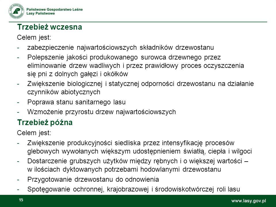 15 Trzebież wczesna Celem jest: -zabezpieczenie najwartościowszych składników drzewostanu -Polepszenie jakości produkowanego surowca drzewnego przez e