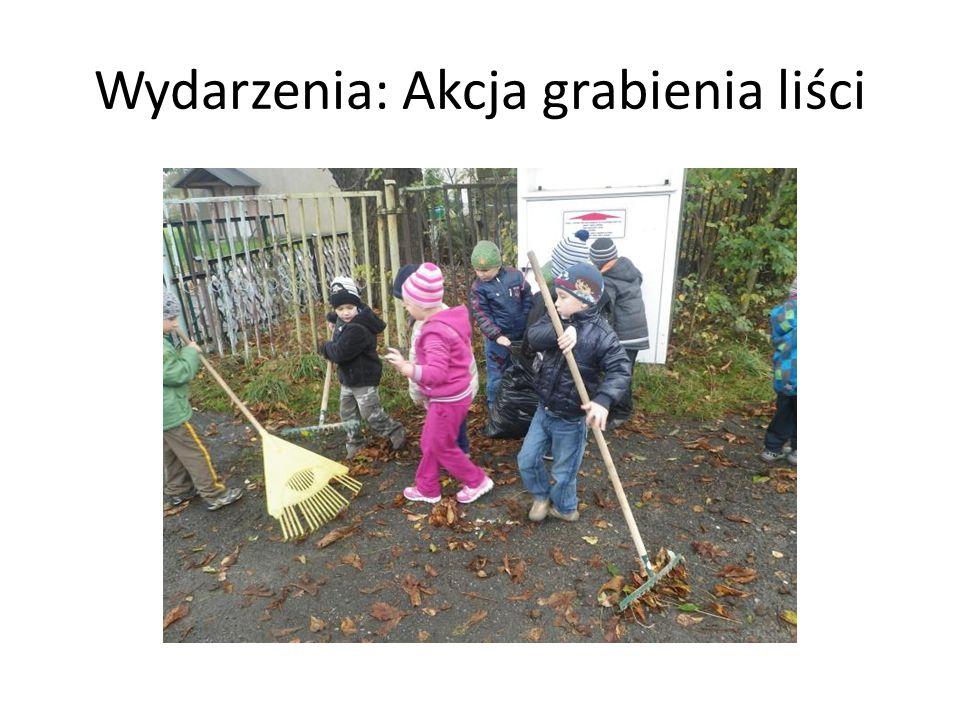 Wydarzenia: Akcja grabienia liści