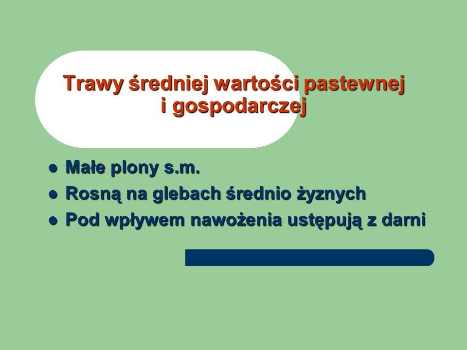 B.Rutkowska Atlas roślin łąkowych i pastwiskowych PWR i L Rysunki H.