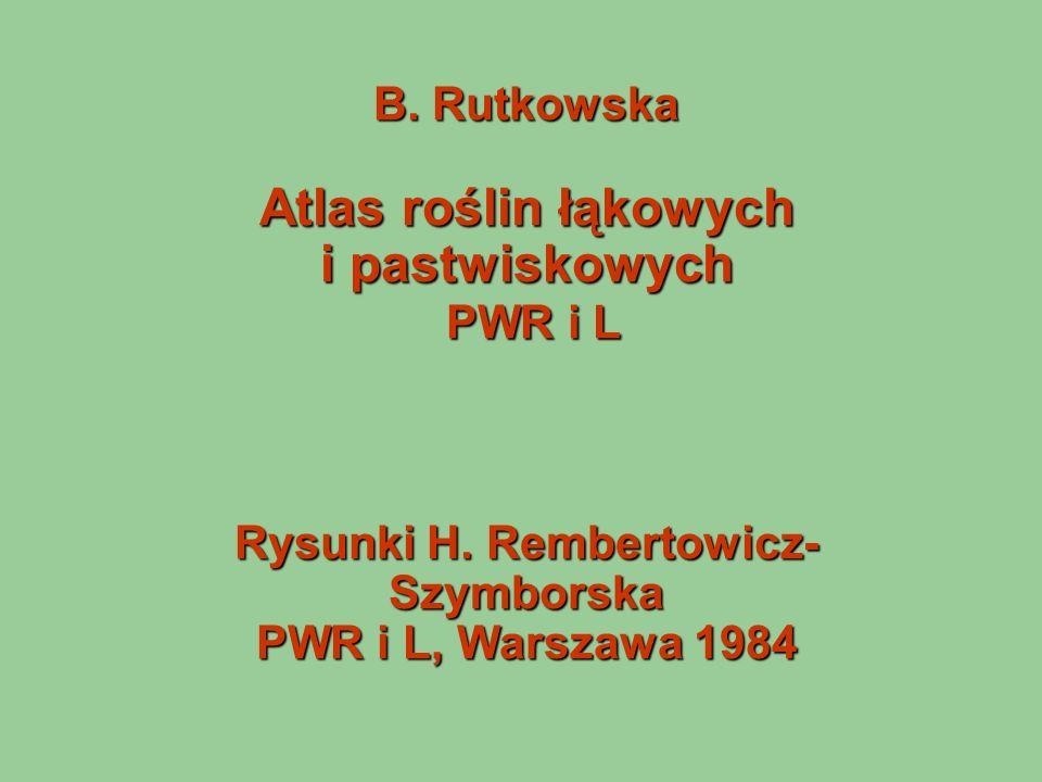 B. Rutkowska Atlas roślin łąkowych i pastwiskowych PWR i L Rysunki H. Rembertowicz- Szymborska PWR i L, Warszawa 1984