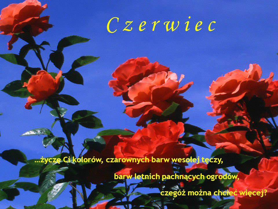 C z e r w i e c …życzę Ci kolorów, czarownych barw wesołej tęczy, barw letnich pachnących ogrodów, czegóż można chcieć więcej?