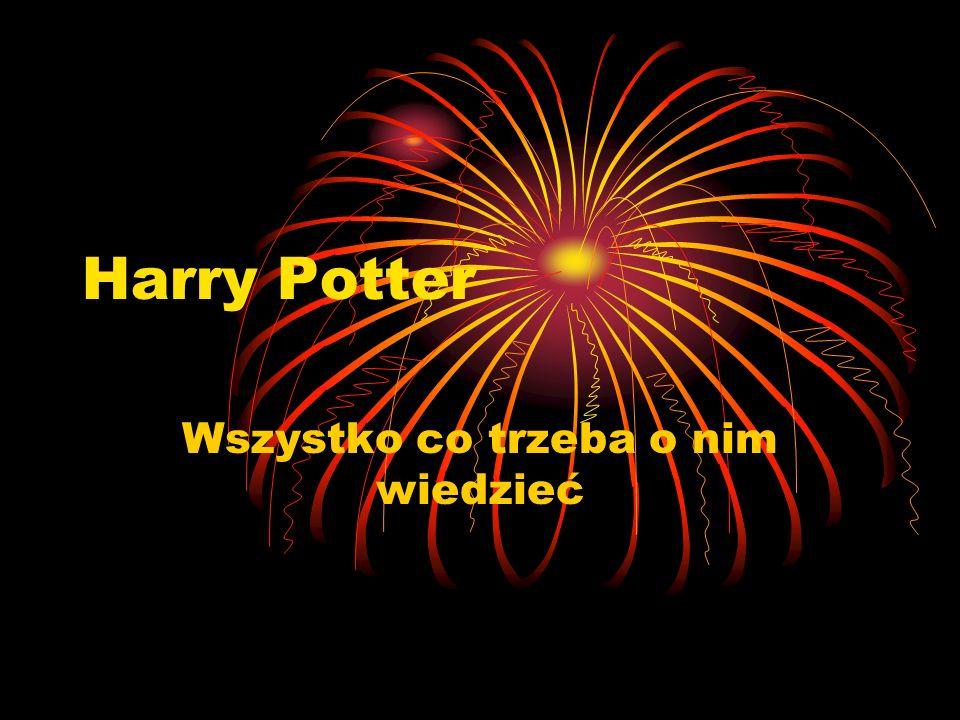 Harry Potter Wszystko co trzeba o nim wiedzieć