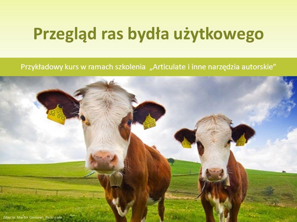 Tytuł kursu Przegląd ras bydła użytkowego Przykładowy kurs w ramach szkolenia Articulate i inne narzędzia autorskie Zdjęcie: Martin Gommel, flickr.com