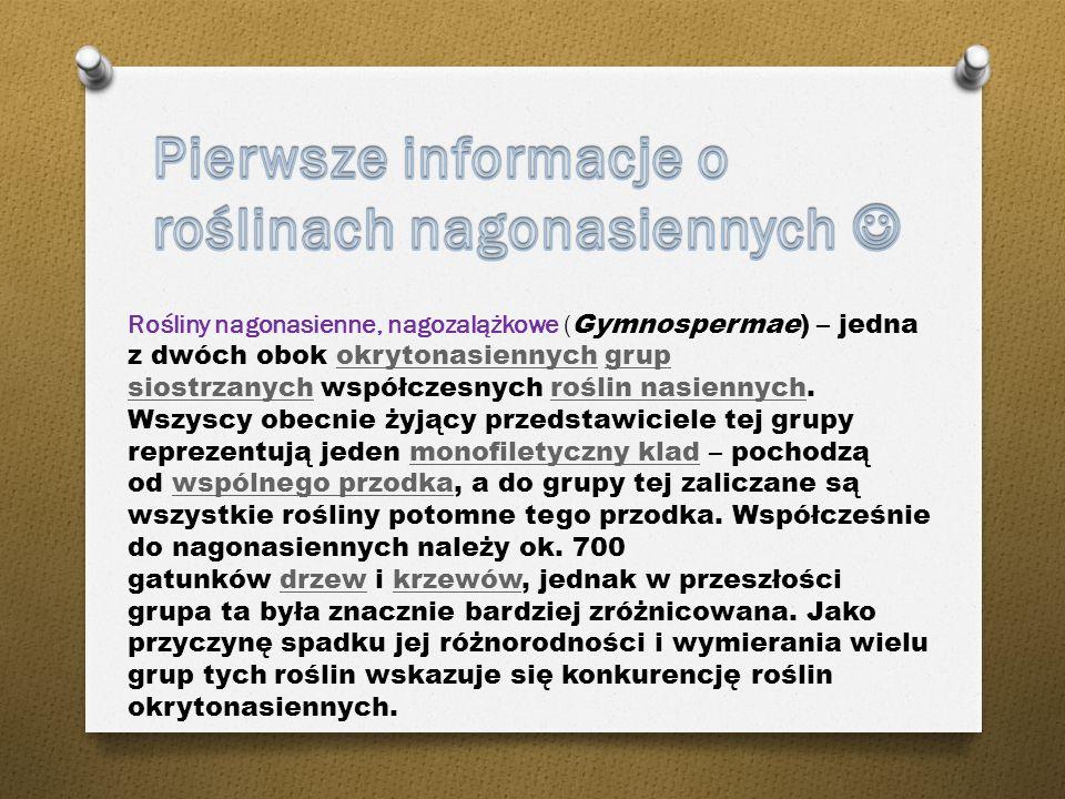 Pamiętaj! Informacje zawarte w Wikipedii nie zawsze muszą być prawdziwe. Wikipedia to wolna encyklopedia, którą każdy może redagować. Pod każdym zamie