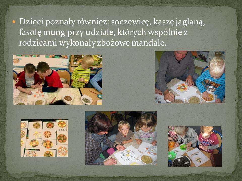 Dzieci poznały również: soczewicę, kaszę jaglaną, fasolę mung przy udziale, których wspólnie z rodzicami wykonały zbożowe mandale.