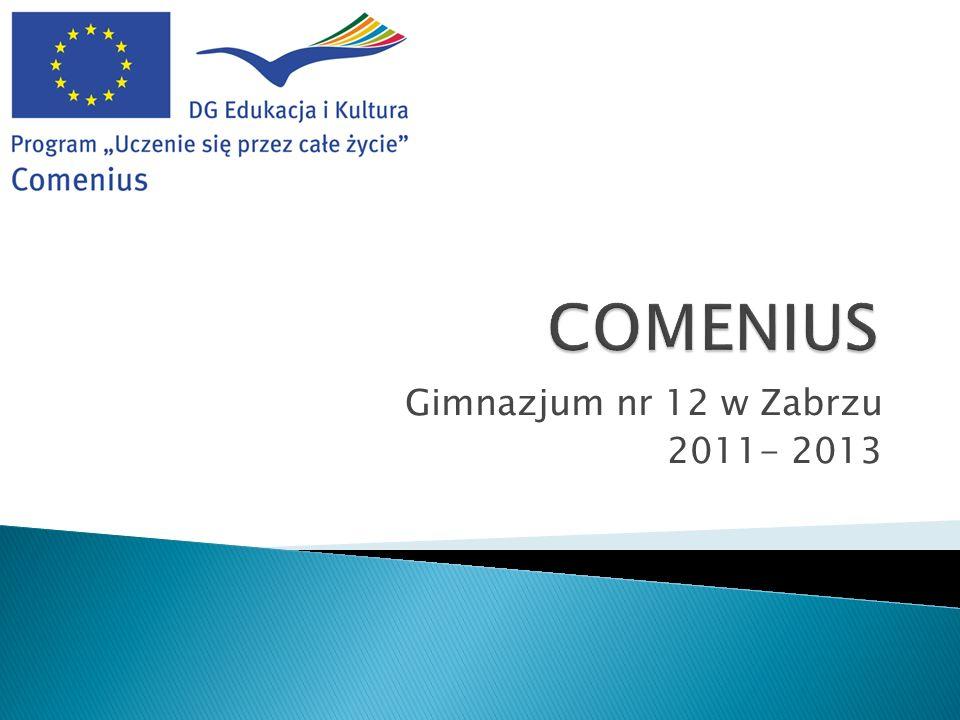 Gimnazjum nr 12 w Zabrzu 2011- 2013