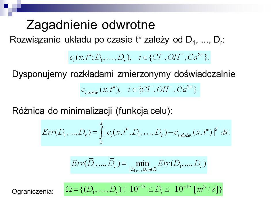 Zagadnienie odwrotne Rozwiązanie układu po czasie t* zależy od D 1,..., D r : Dysponujemy rozkładami zmierzonymy doświadczalnie Różnica do minimalizac