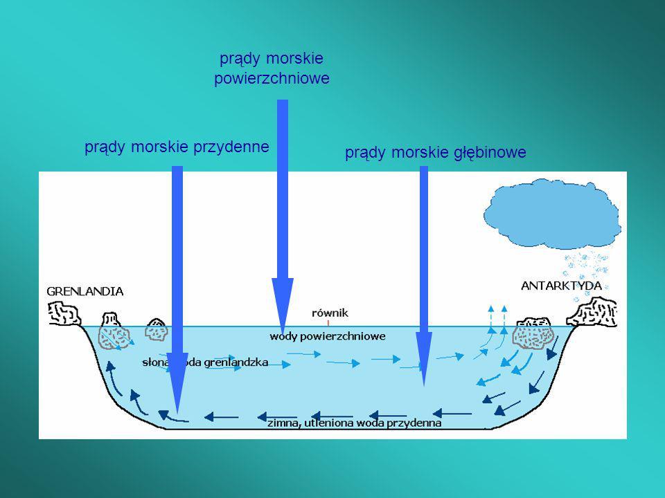 prądy morskie powierzchniowe prądy morskie głębinowe prądy morskie przydenne