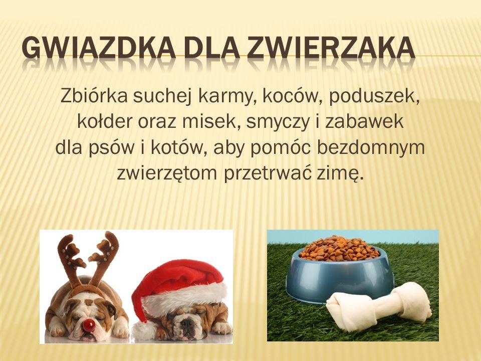 Zbiórka suchej karmy, koców, poduszek, kołder oraz misek, smyczy i zabawek dla psów i kotów, aby pomóc bezdomnym zwierzętom przetrwać zimę.