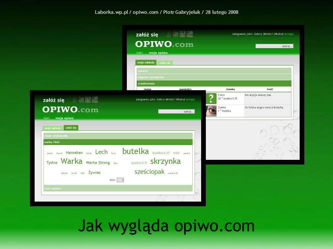 Laborka.wp.pl / opiwo.com / Piotr Gabryjeluk / 28 lutego 2008 Jak wygląda opiwo.com